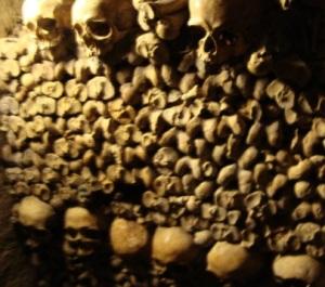 SkullsCat